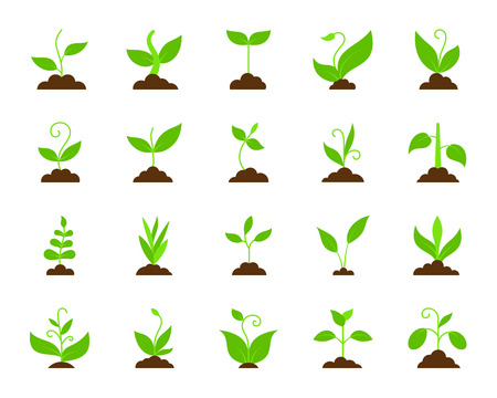 Grass flat icons set. Web sign kit of plant. Organic sprout of plant pictogram collection includes sapling, grow, bush. Simple grass cartoon colorful icon symbol isolated on white. Vector Illustration