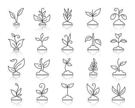 Grass thin line icons set. Outline sign kit of organic plant. Sprout linear icon collection includes flower, gardening, ecology. Simple grass black contour symbol with reflection vector Illustration Stock Illustratie