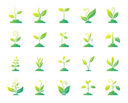 Gras silhouet pictogrammen instellen. Geïsoleerd op wit Webteken kit van biologische plant. De verzameling spruitpictogrammen omvat bio, eco, red de natuur. Modern verloop eenvoudig contoursymbool. Gras vector pictogram vorm