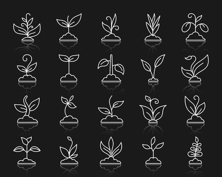 Grass thin line icons set. Outline web sign kit of plant. Sprout linear icon collection includes agriculture, seedling, sapling. Simple grass white contour symbol with reflection. Vector Illustration