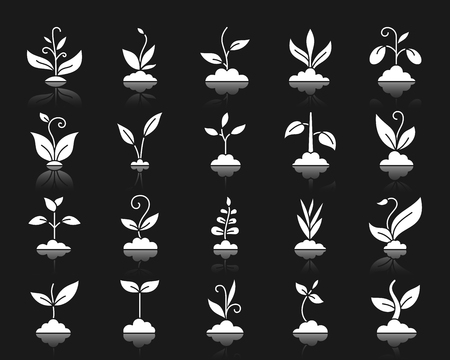 Grass silhouette icons set. Isolated web sign kit of green. Organic sprout pictogram collection includes sapling, grow, bush. Simple grass symbol with reflection. White bio plant vector icon shape