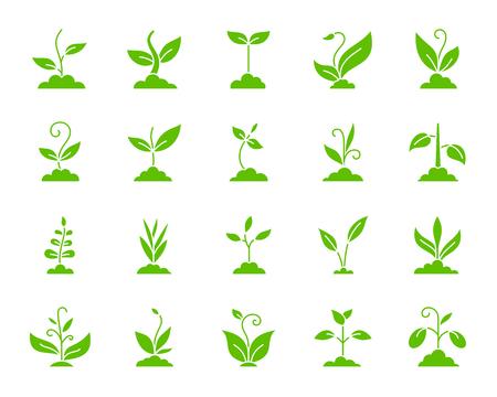 Set di icone di sagoma di erba. Kit segno web isolato della pianta eco. La raccolta di pittogrammi monocromatici Sprout include soia, grano, caffè. Simbolo di contorno semplice erba verde. Forma di icona di vettore per timbro Vettoriali