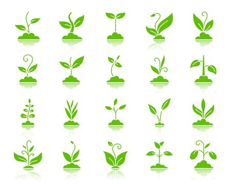Set di icone di sagoma di erba. Kit segno web della pianta. La raccolta di pittogrammi verdi germogli include agricoltura, piantina, alberello. Simbolo di erba semplice con la riflessione. Forma dell'icona di vettore isolata su bianco Vettoriali