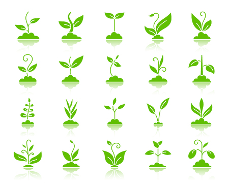 Grass silhouette icons set. Web sign kit of plant. Sprout green pictogram collection includes agriculture, seedling, sapling. Simple grass symbol with reflection. Vector Icon shape isolated on white