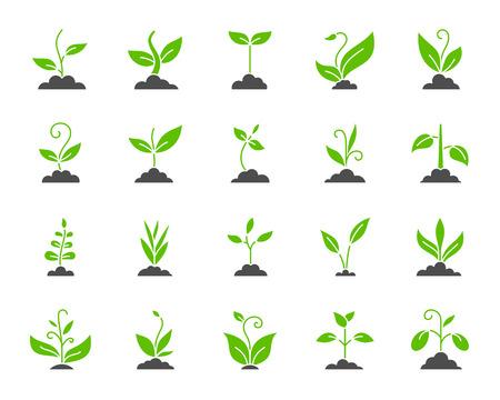 Conjunto de iconos de silueta de hierba. Aislado en blanco kit de muestra de web de planta biológica. La colección de pictogramas de brotes incluye flores, jardinería, ecología. Símbolo de contorno de hierba verde simple. Forma de icono de vector para sello