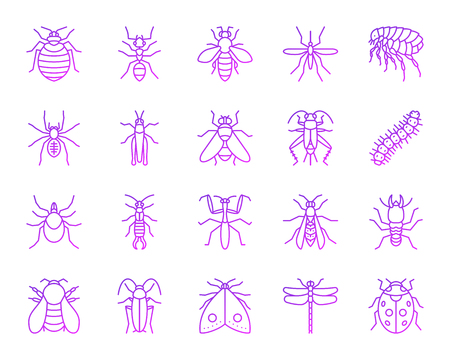 Danger Insect thin line icons set. Outline vector web sign kit of bed bug. Beetle linear icon collection includes ant, bee, cockroach. Modern color gradient simple danger insect symbol isolated white Vector Illustration