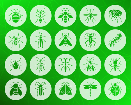 Danger Insect icons set. Web sign kit of bugs. Beetle pictogram collection includes ant, bee, cockroach. Simple danger insect vector symbol. Icon shape carved from circle on colorful background
