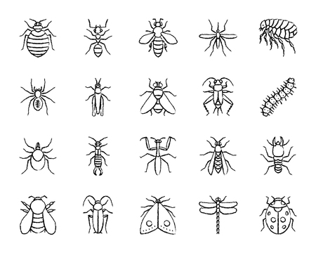 Danger insect charcoal icons set. Grunge outline sign kit of bugs. Beetle linear icon collection includes ladybug, mantis, flea. Hand drawn simple danger insect symbol on white. Vector Illustration