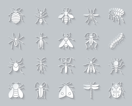 Danger insect paper cut art icons set. 3D web sign kit of bed bug. Beetle pictogram collection includes caterpillar, earwig aphid. Simple danger insect vector paper carved icon. Material design symbol Illustration