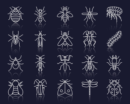 Danger Insect thin line icons set. Outline web sign kit of bed bug. Beetle linear icon collection includes caterpillar, earwig, aphid. Simple danger insect white contour vector symbol with reflection Illustration