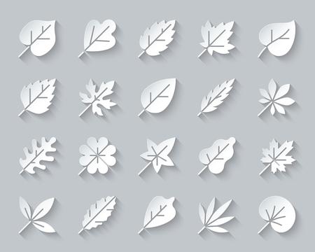 Conjunto de iconos de arte de corte de papel de hoja orgánica. Kit de señalización web 3D de follaje de temporada. Planta de colección de pictogramas de otoño, olmo de verano, eucalipto. Papel de vector de hoja simple tallado en forma de icono. Símbolo de diseño de materiales