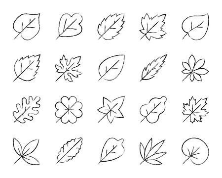 Set di icone di carbone foglia biologica. Corredo del segno del profilo di lerciume dell'albero del fogliame. Le icone lineari della pianta della natura includono quercia, limone, uva da vino. Simbolo di foglie semplici disegnato a mano su bianco. Illustrazione vettoriale