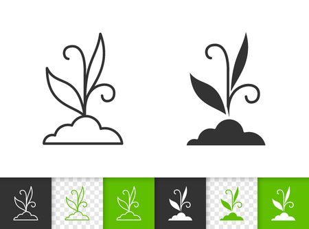 Eco Grass black linear and silhouette icons. Thin line sign of bio bush. Organic Plant outline pictogram isolated on white, green, transparent backdrop. Vector Icon shape. Grass simple symbol closeup