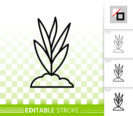 Grass thin line icon. Outline web sign of bio bush. Organic Plant linear pictogram with different stroke width. Eco simple vector symbol transparent background. Grass editable stroke icon without fill