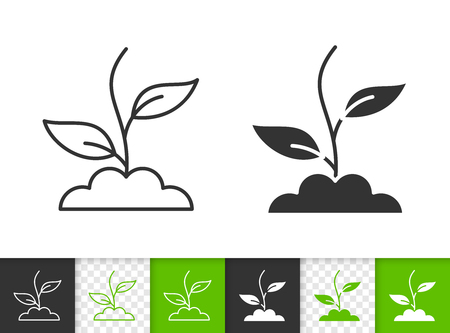 Green Grass black linear and silhouette icons. Thin line sign of plant. Sprout outline pictogram isolated on white, color, transparent background. Vector Icon shape. Green Grass simple symbol closeup