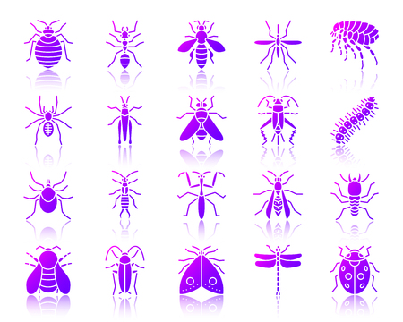 Danger Insect silhouette icons set with reflection. Color sign kit of bed bug. Beetle vector pictogram collection mite, wasp, gnat mosquito Gradient contour simple danger insect icon isolated on white