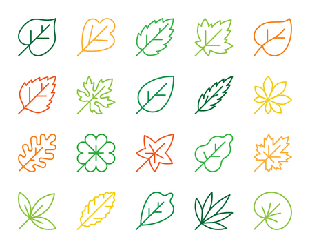 Organic Leaf thin line icons set. Outline monochrome sign kit of season foliage. Autumn Garden linear icon clover, birch, flora Simple organic leaf contour symbol isolated on white Vector Illustration 矢量图像