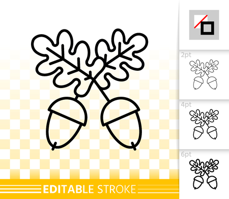 Acorn thin line icon. Outline web sign of oak fruit. Leaf linear pictogram with different stroke width. Simple vector symbol, transparent background. Acorn editable stroke icon without fill Illustration