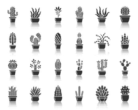 Cactus silhouette icons set. Web sign kit of succulent. Home Plant pictogram collection saguaro, prickly pear, aloe, tropical, botanical. Simple vector black symbol. Cactus shape icon with reflection Stock Illustratie