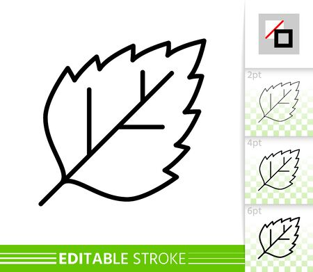 Leaf birch or poplar thin line icon. Nature banner, flat style. Botanical poster. Linear pictogram. Simple illustration, outline symbol. Vector sign isolated white. Editable stroke icons without fill