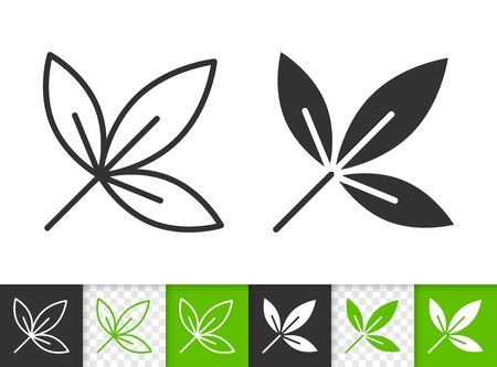Leaf black linear and silhouette icons. Thin line sign of ash. Maple outline pictogram isolated on white, green, transparent background. Sprout vector icon shape. Eco plant simple symbol closeup Иллюстрация