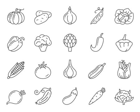 Vegetable thin line icon set. Food collection of simple outline signs. Vegetarian symbol in linear style garlic onion, broccoli contour flat icons design. Isolated on white concept vector Illustration Banco de Imagens - 128740419