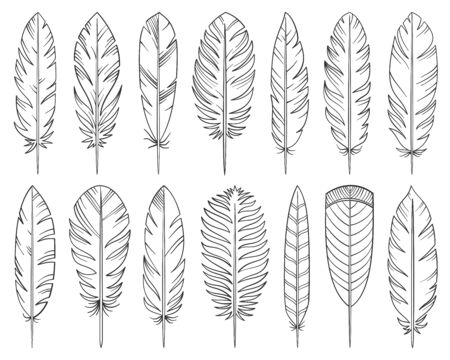 Feather hand drawn line style set. Quill collection of simple outline doodle signs. Tribal linear symbol. Pen plume sketch black contour flat icon design. Isolated on white concept vector Illustration