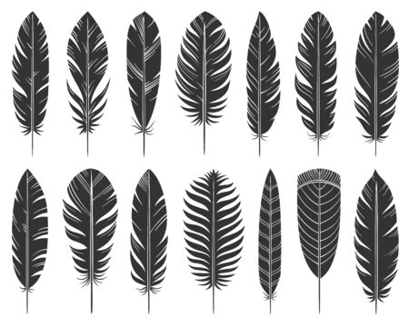 Feather black silhouette set. Quill symbol, simple shape pictogram collection. Pen, bird plume doodle style flat element. Hand drawn design sign. Isolated on white icon concept vector illustration