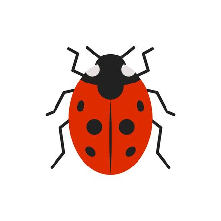 Ladybug single flat icon. Ladybird simple sign in cartoon style. Bug pictogram symbol.