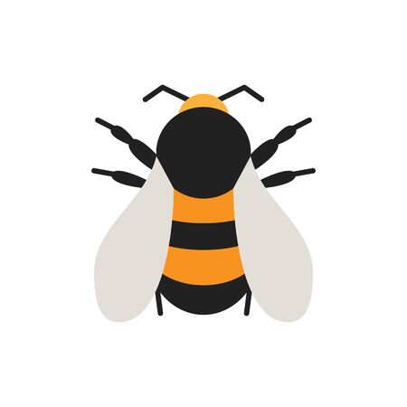 Bumblebee single flat icon. Bee simple sign in cartoon style. Insect pictogram. Wildlife symbol. Entomology closeup color vector illustration isolated on white.