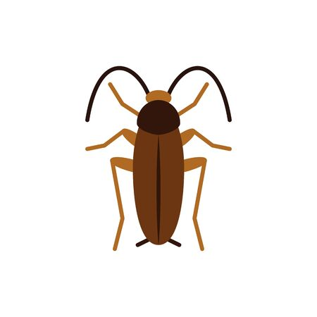 Cockroach single flat icon. Roach simple sign in cartoon style. Pest insect pictogram. Wildlife symbol. Entomology closeup vector illustration isolated on white.  イラスト・ベクター素材