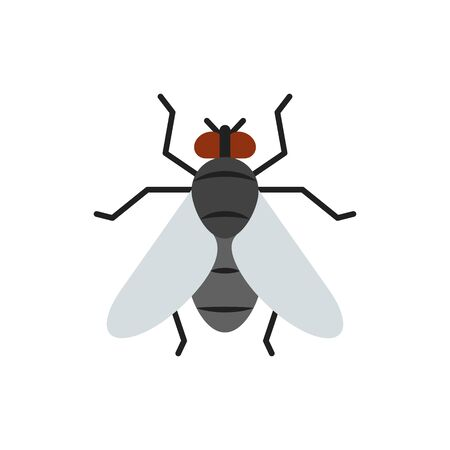 Fly single flat icon. Insect simple sign in cartoon style. Housefly pictogram. Wildlife symbol. Entomology closeup color vector illustration isolated on white.