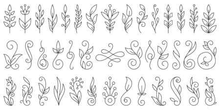 Floral Branch thin line set. Flourish ornament simple outline signs collection. Swirl vintage calligraphy wedding design element, linear style. Black contour Isolated on white flat vector Illustration
