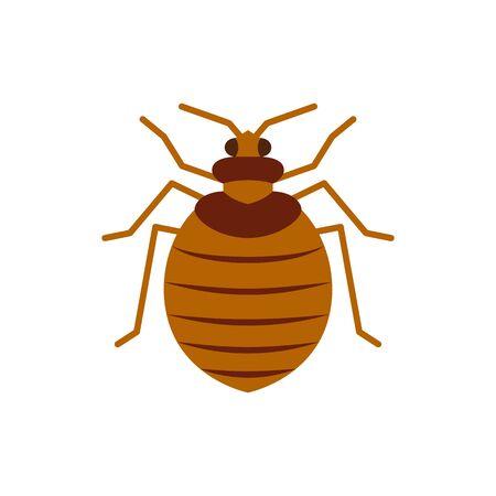 Bedbug single flat icon. Bug simple sign, cartoon style. Insect pest symbol. Wildlife pictogram. Entomology closeup color vector illustration isolated on white.