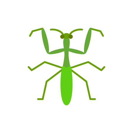 Mantis single flat icon. Insect simple sign in cartoon style. Bug pictogram Wildlife symbol. Entomology closeup color vector illustration isolated on white. Vettoriali