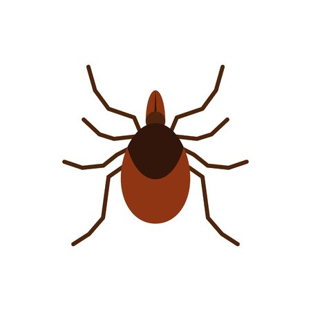 Mite single flat icon. Tick simple sign in cartoon style. Insect pictogram Wildlife symbol. Entomology closeup color vector illustration isolated on white.  イラスト・ベクター素材