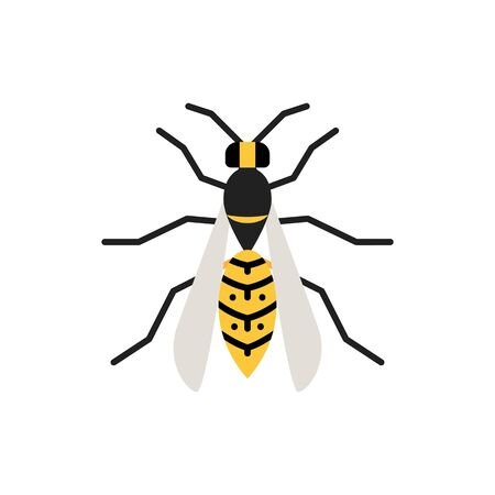 Wasp single flat icon. Hornet simple sign in cartoon style. Bee pictogram. Insect symbol Wildlife, Entomology closeup color vector illustration isolated on white.
