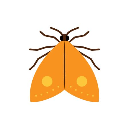 Moth single flat icon. Butterfly simple sign in cartoon style. Insect pictogram. Wildlife symbol. Entomology closeup color vector illustration isolated on white.