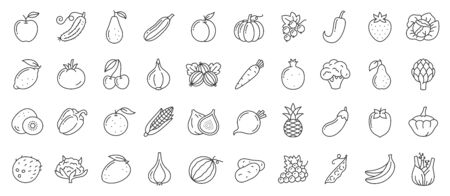 Fruit, berry, vegetable thin line icon set. Food collection of simple outline signs. Symbol in linear style. Vegetarian black contour flat icons design. Isolated on white concept vector Illustration