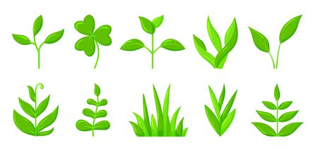 Green plant, grass, sprout flat cartoon icons set. Organic young seedling, growing sapling nature symbol. Spring, summer garden, agriculture, ecology sign. Isolated on white vector illustration Ilustrace