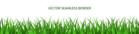 Green grass spring seamless border. Summer herbal panoramic background. Endless lawn isolated on white. Natural herbal horizontal banner. Cartoon colorful floral vector illustration