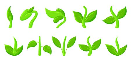 Green plant, grass, sprout flat cartoon icons set. Organic young seedling, growing sapling nature symbol. Spring, summer garden, agriculture, ecology sign. Isolated on white vector illustration Vettoriali