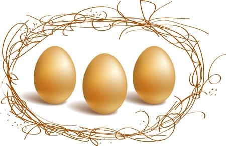 Three gold eggs in the nest frame Stock Vector - 9193984