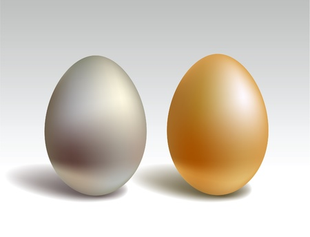 solid silver: Gold and silver eggs  Illustration