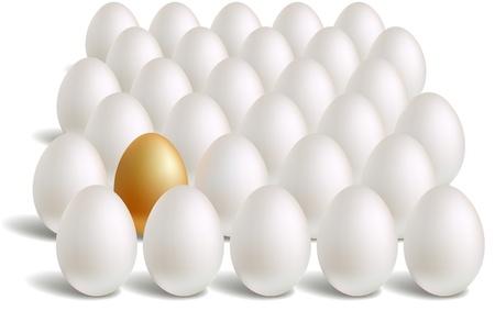 white & unique gold eggs rows Stock Vector - 9294924