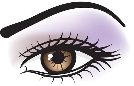 weibliche braune Augen  Vektorgrafik