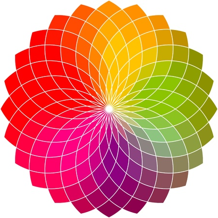 Kwiat koło kolorów wektor