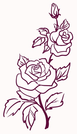 three stylized pale roses  isolated on light  background, vector illustration  Ilustração