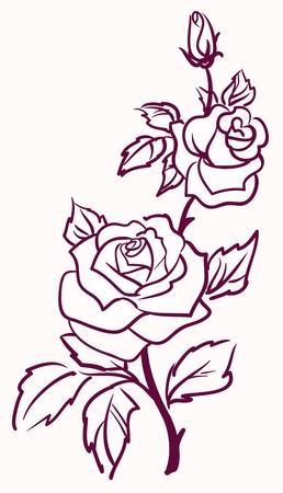 róża: trzy stylizowane blade róże izolowanych na jasnym tle, ilustracji wektorowych