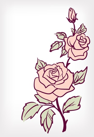 rose stem: Pink rose flower, vintage vector card